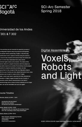 voxels-robots-and-light-febrero-2018